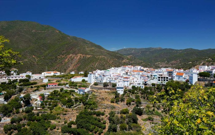 istan-marbella-property-buer-support-in-marbella-property-consultants